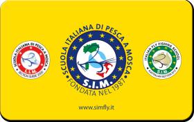 SIM card tessera 2014