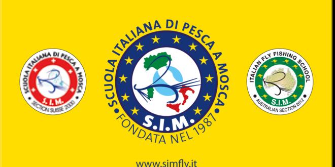 SIM card tessera 2015