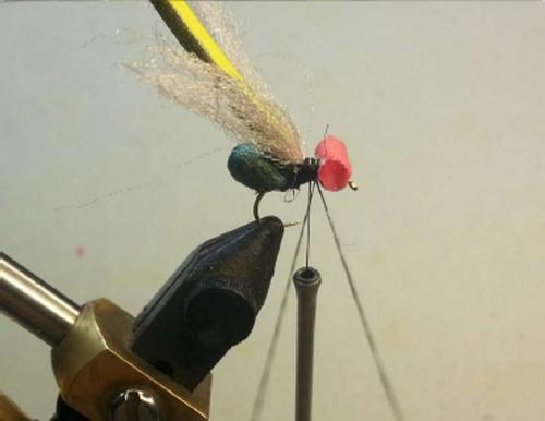 Con l'ausilio di una pinzetta a molla per dubbing, predisporre un'asola con il filo di montaggio per inserirci le fibre di ICE DUB che andranno a simulare le zampe e il torace.